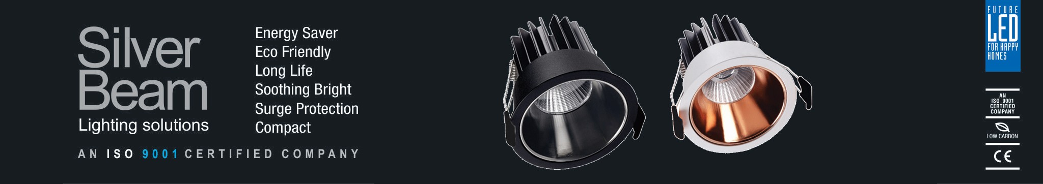 Led-Down-Lit-Cob-Light-New